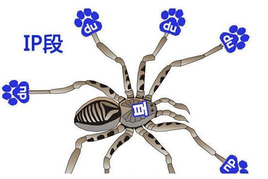 百度搜索引擎蜘蛛