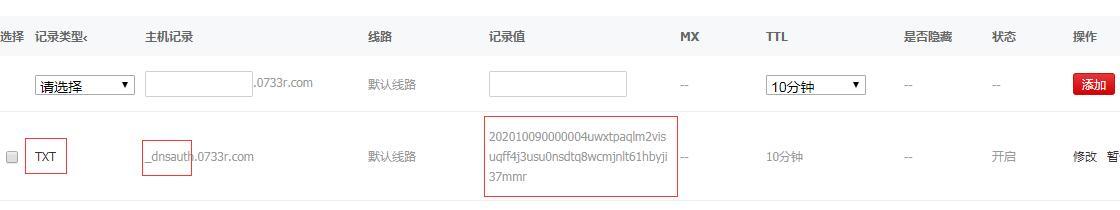 新网域名txt解析配置