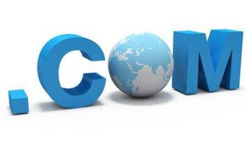 如何查询域名注册人信息及注册商