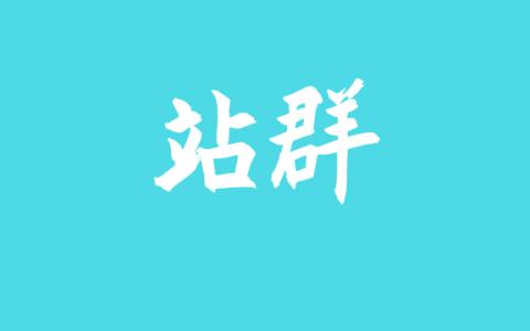 站群SEO