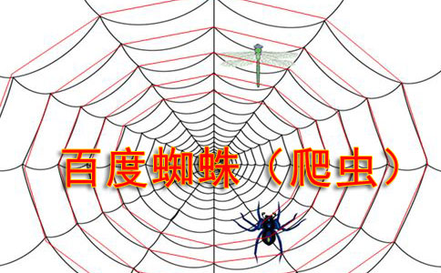 百度搜索蜘蛛