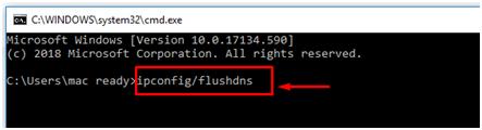 输入 ipconfig/flushdns 并按Enter键