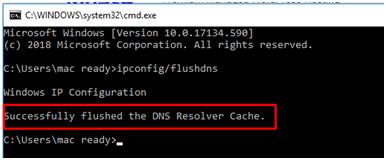 提示DNS Flush的成功信息