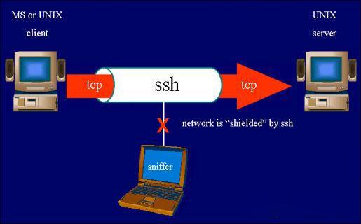 ssh端口