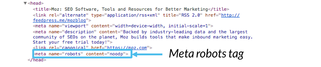 meta-robots-example标记