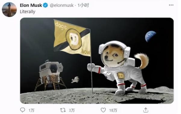 狗狗币登陆外星球的图片