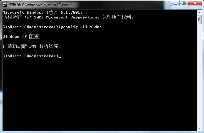 """显示""""已经成功刷新了DNS缓存"""""""