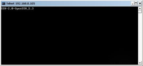 服务器443端口连接成功